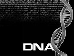DNA Testi Sonuçları Kaç Günde Belli Olur?