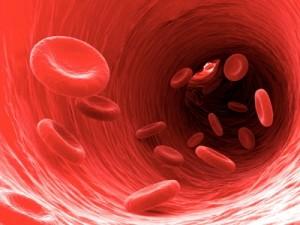 Kan Değerlerini Düşüren Besinler