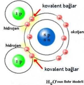 kovalent-bag
