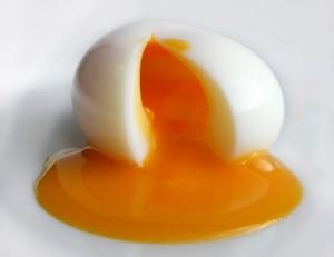 En ucuz protein kaynağı; Yumurta!