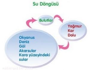 su-dongusu-1