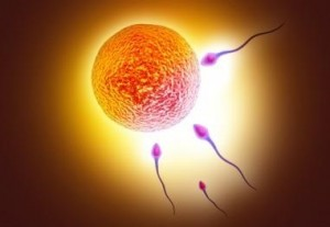 Sperm Testi Neden Yapılır?