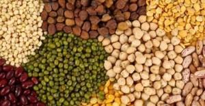 Protein kaynağı kuru baklagiller