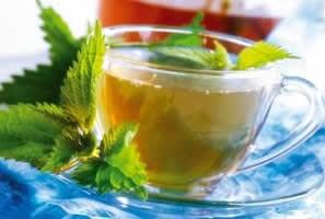 Isırgan otu çayı neye iyi gelir?