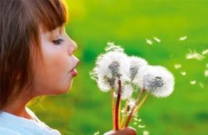 Polen alerjisi tedavisi