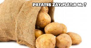 Patates Kilo Vermemize Yardımcı Olur Mu ?