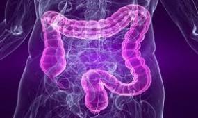 Bağırsak parazitleri ve mikroplardan korunma yolları