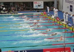 Yüzme yarışı kaç kişiyle yapılır?