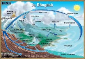 su-dongusu