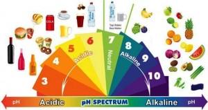 Alkali diyetle zayıflama