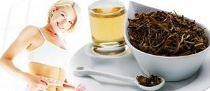 Beyaz Çayla zayıflama