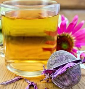 Ekinezya çayının yararları